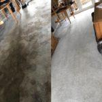 carpet compair.jpeg